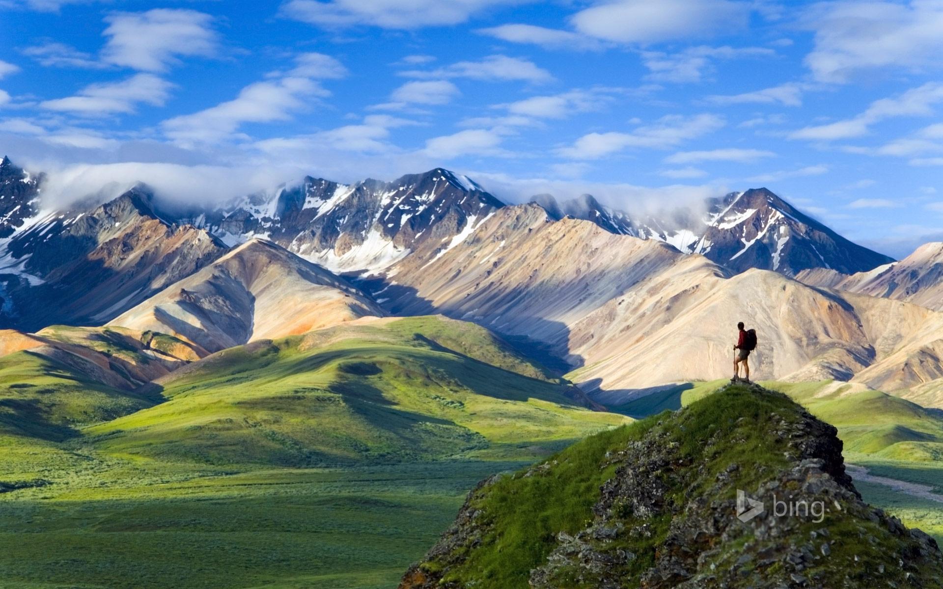HD Wallpapers Denali National Park