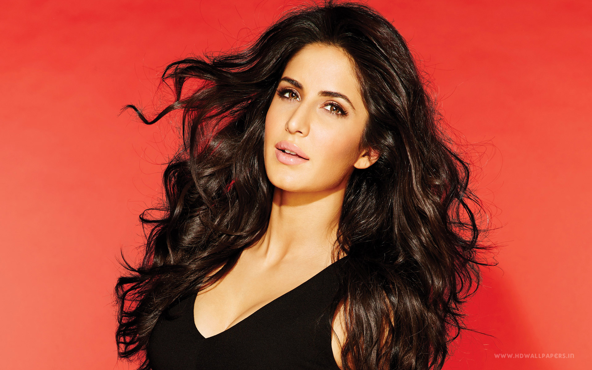 HD Wallpapers Katrina Kaif 36