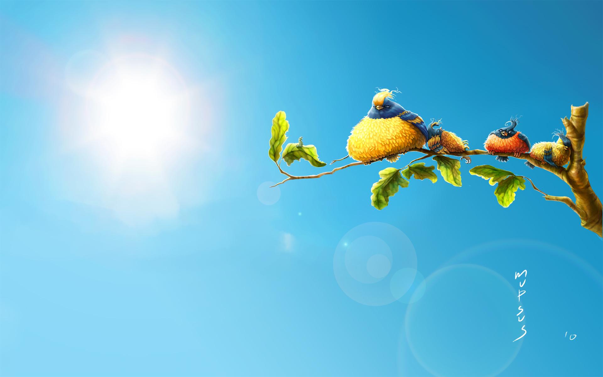 HD Wallpapers Sun Birds