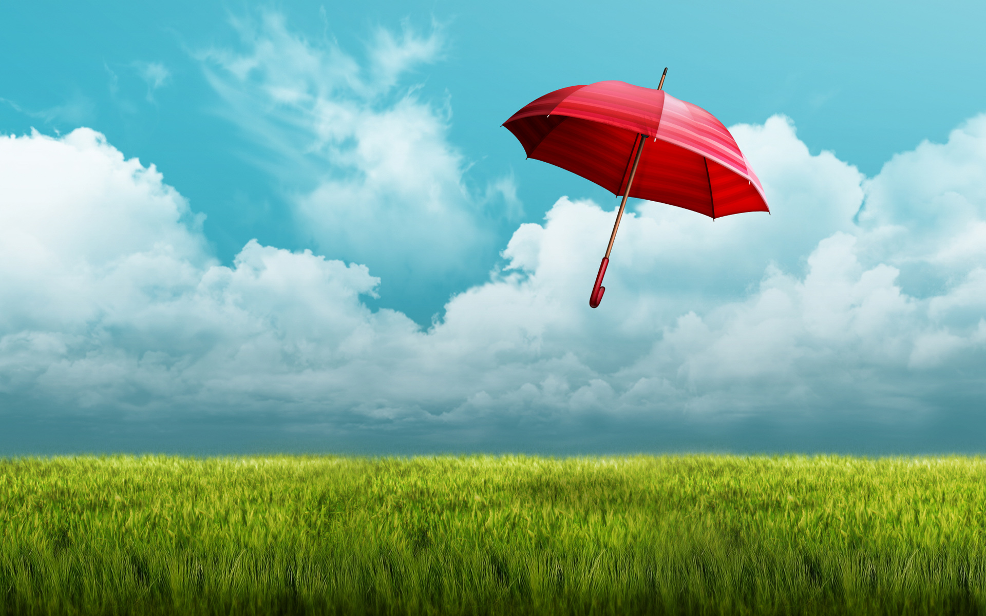 HD Wallpapers Umbrella Fields