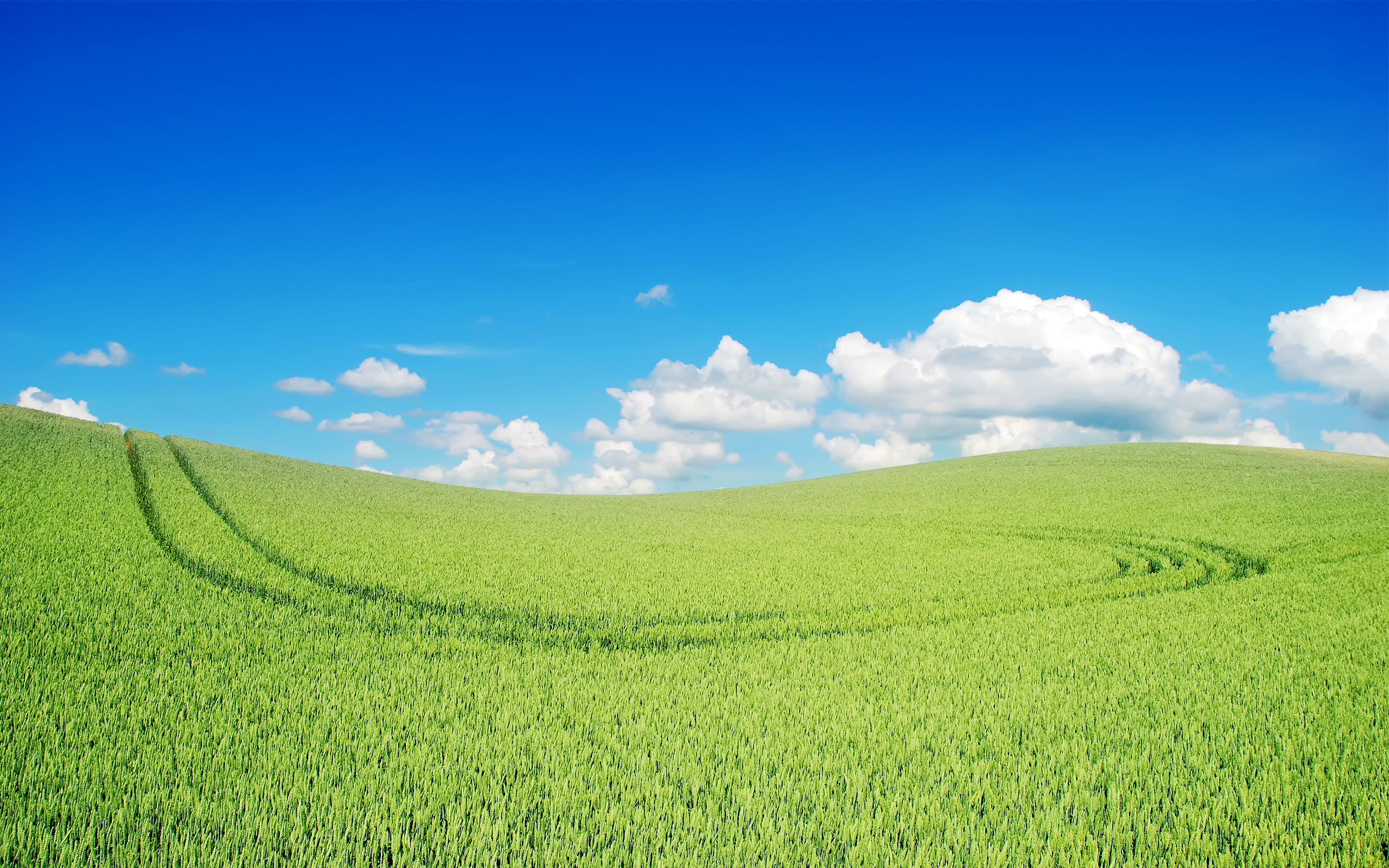 HD Wallpapers Beautiful Green Lscape