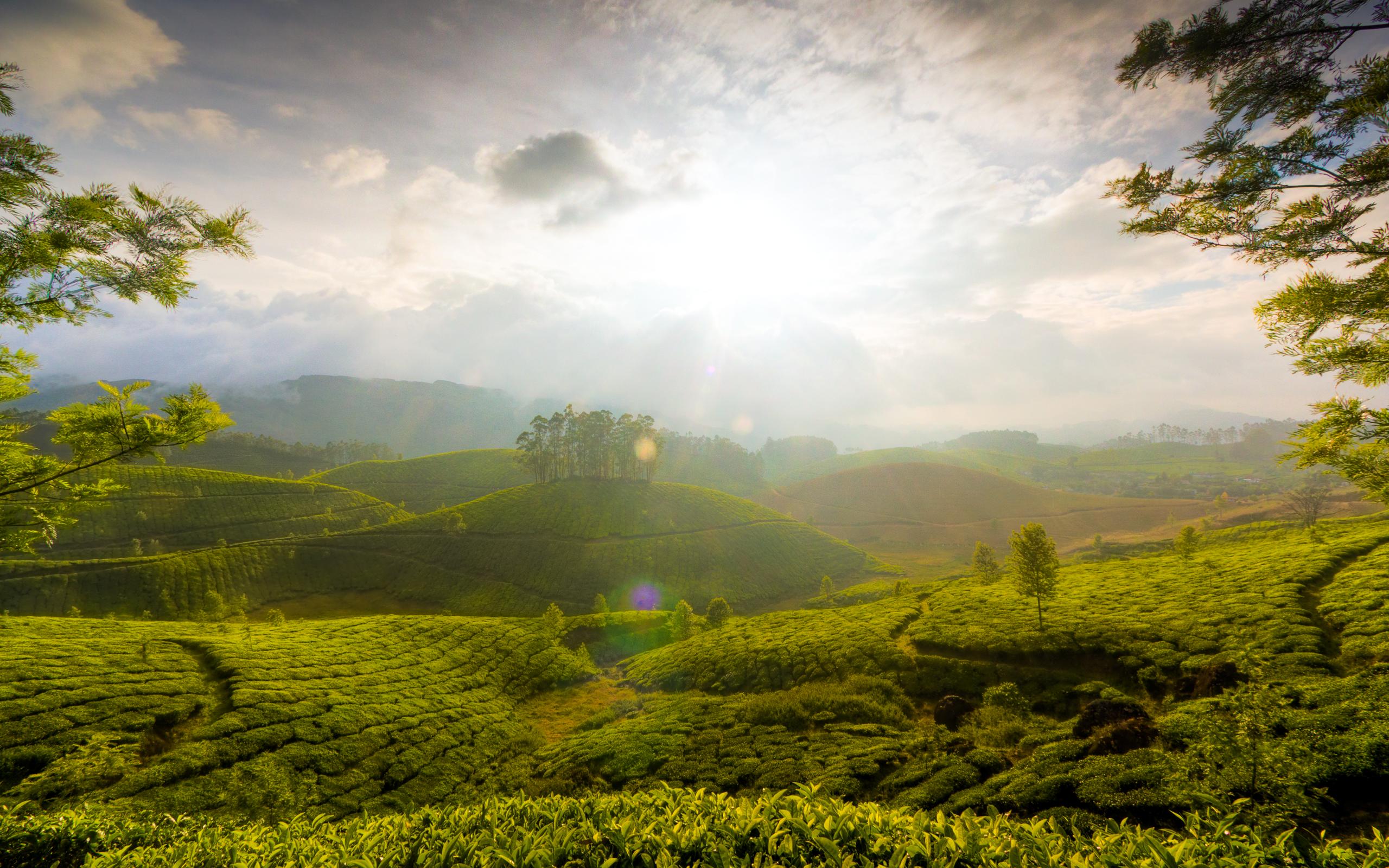 HD Wallpapers Munnar Hills Kerala India