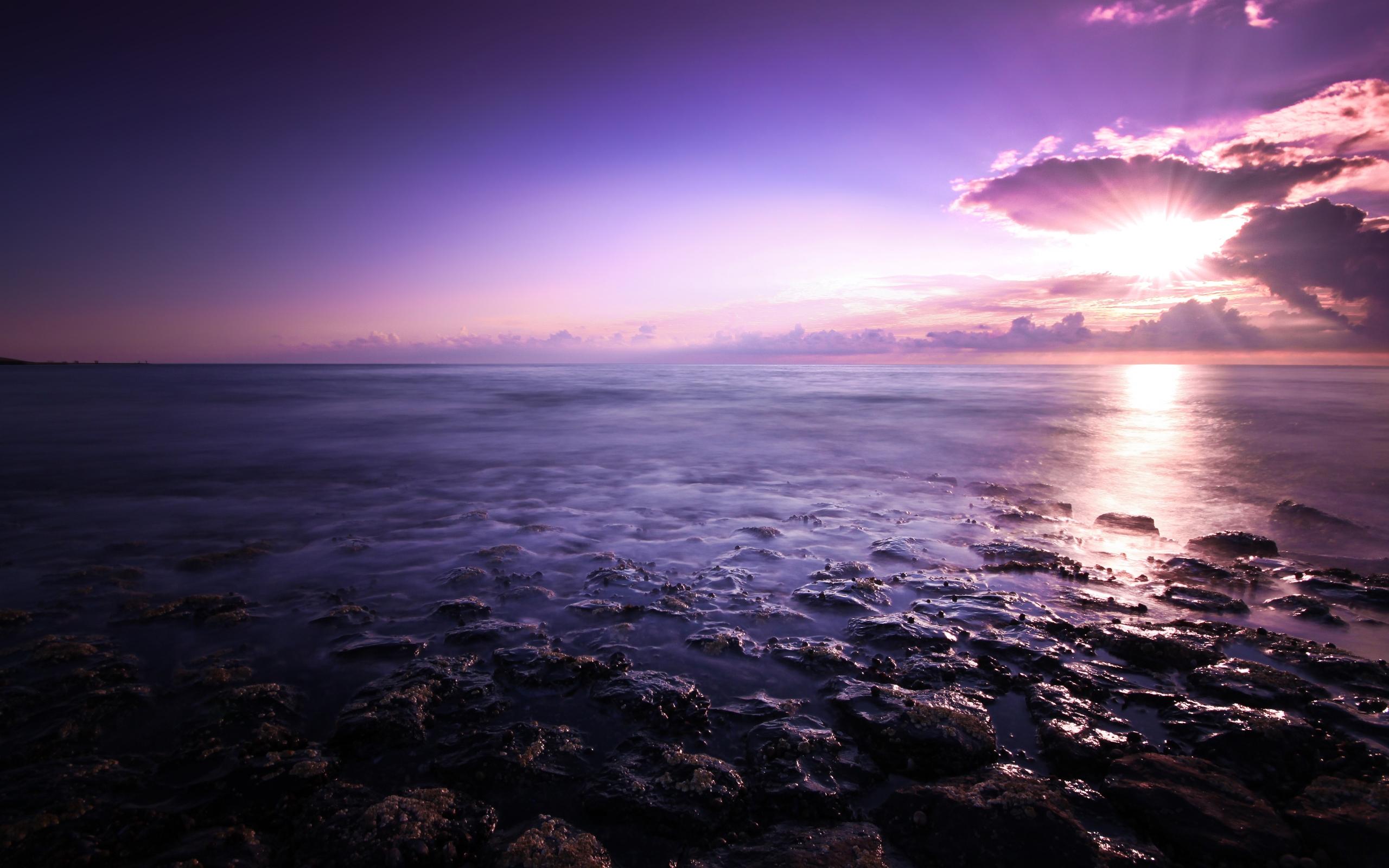 HD Wallpapers Purple Seascape
