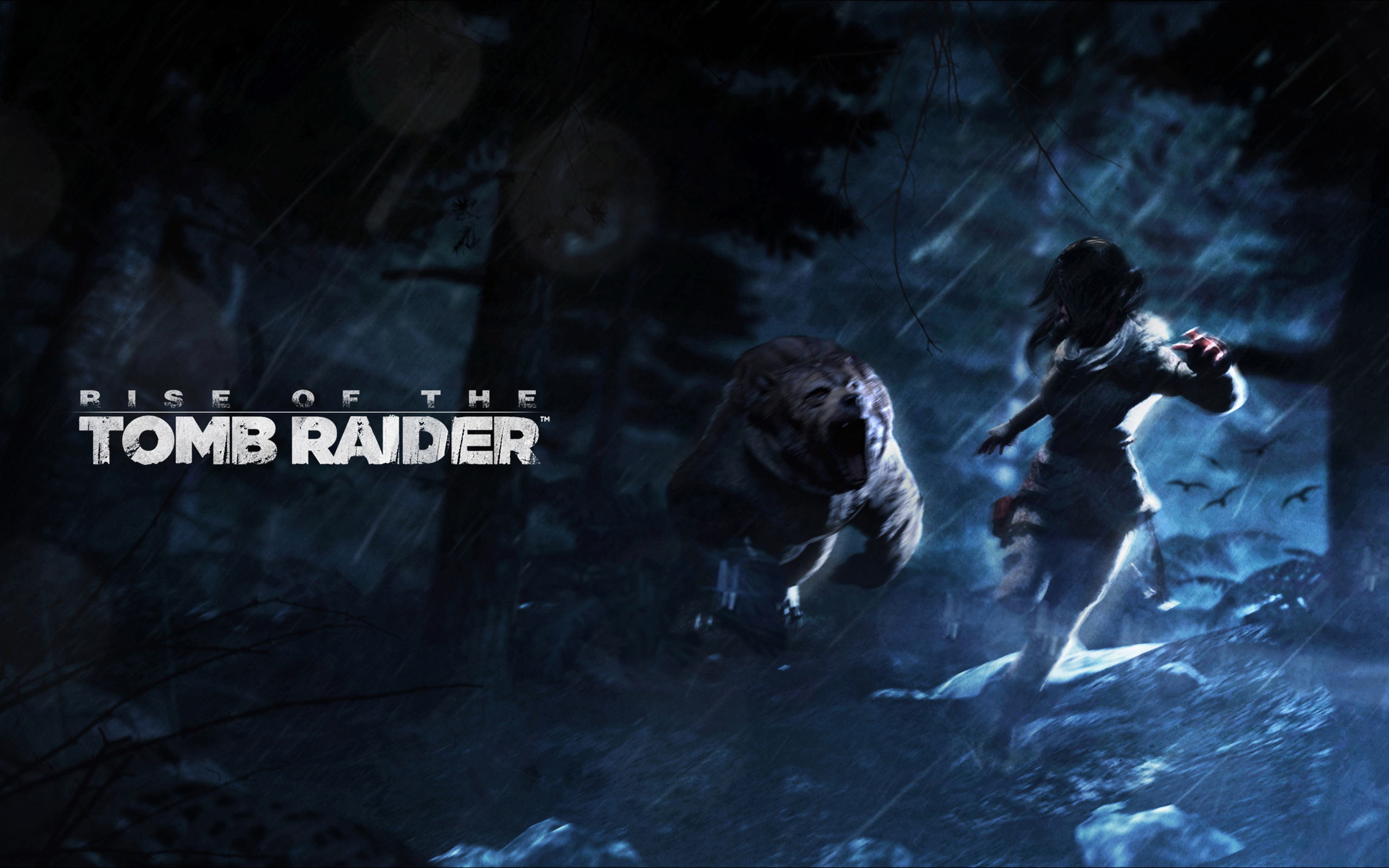 HD Wallpapers Rise of the Tomb Raider Artwork