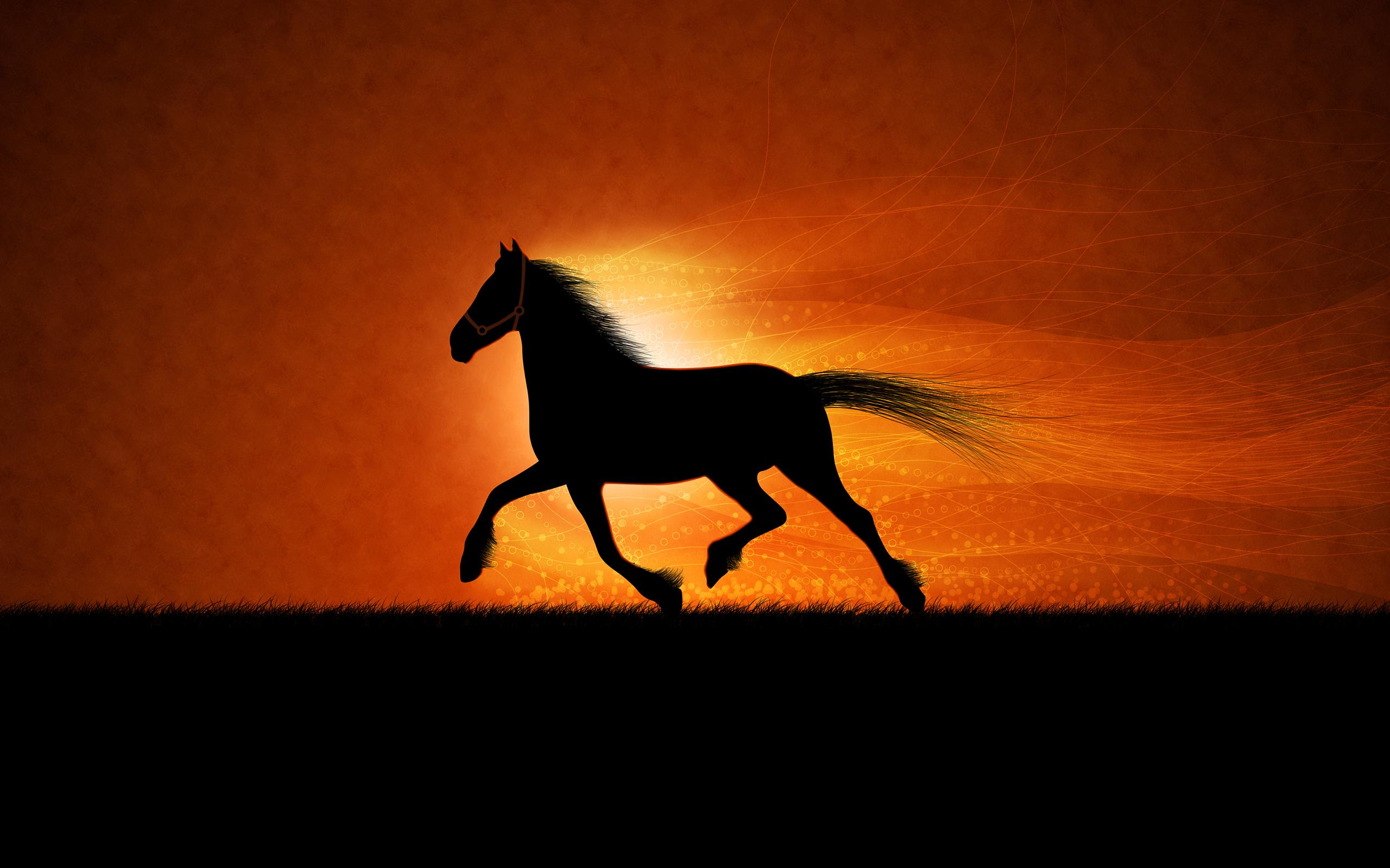 HD Wallpapers Running horse