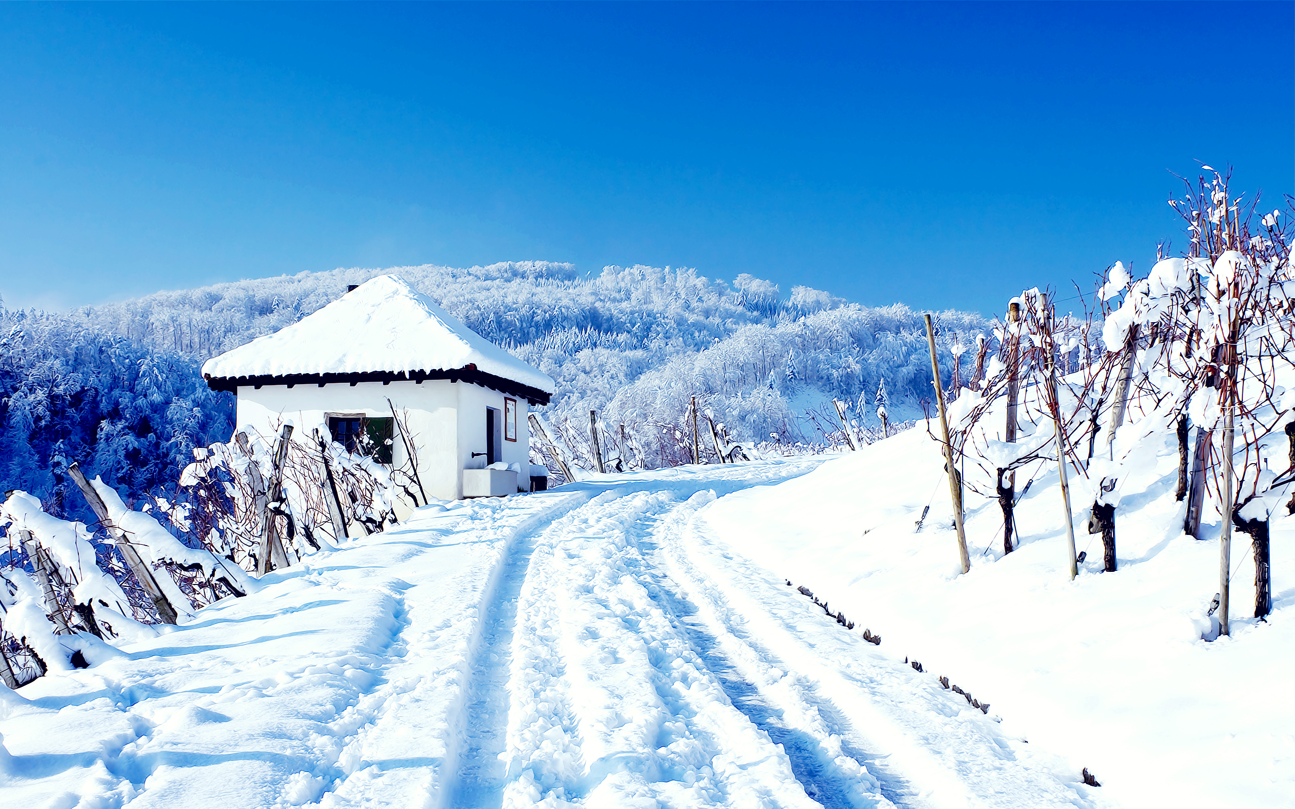 HD Wallpapers Snowy Cottage