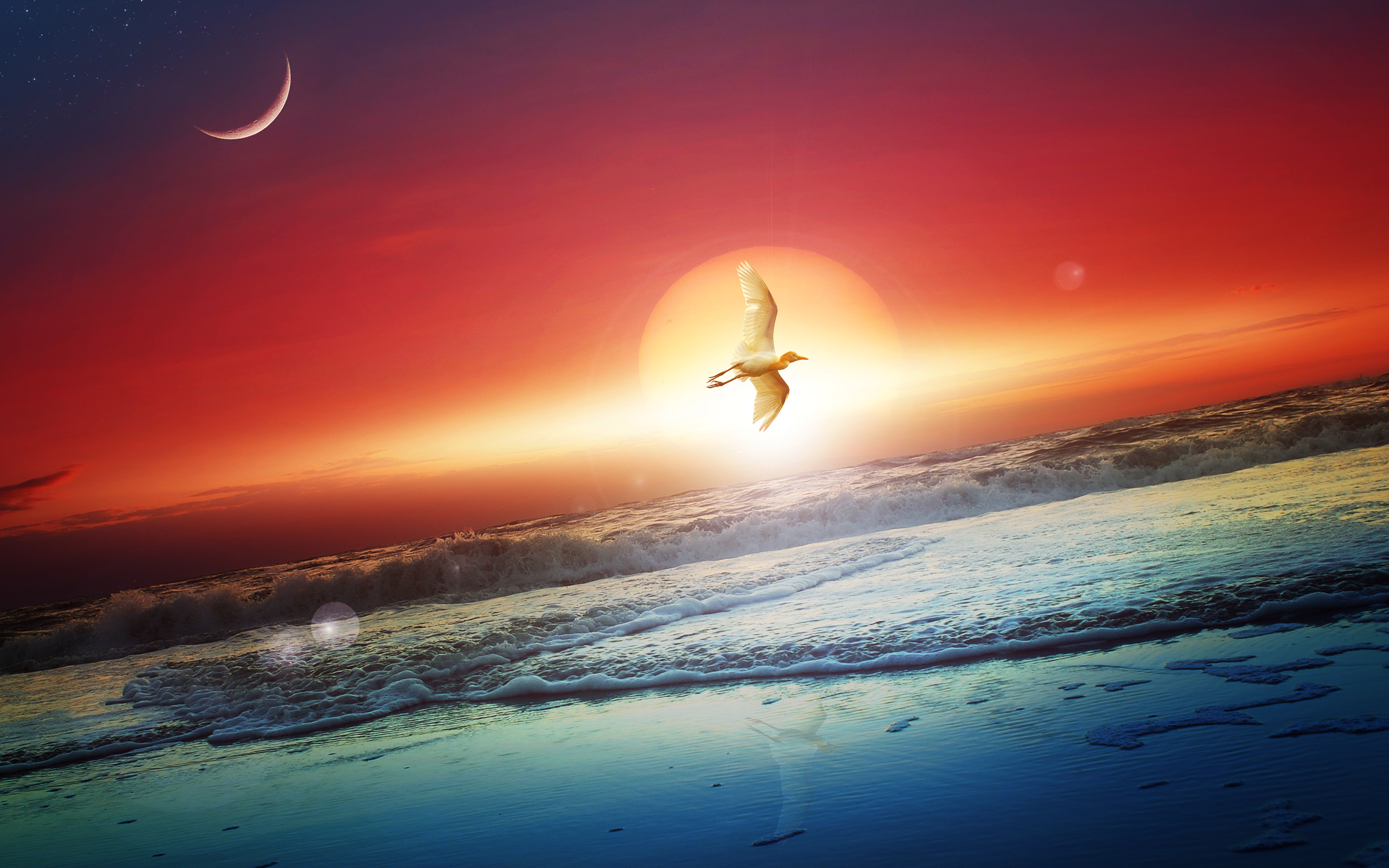 HD Wallpapers Sun Moon