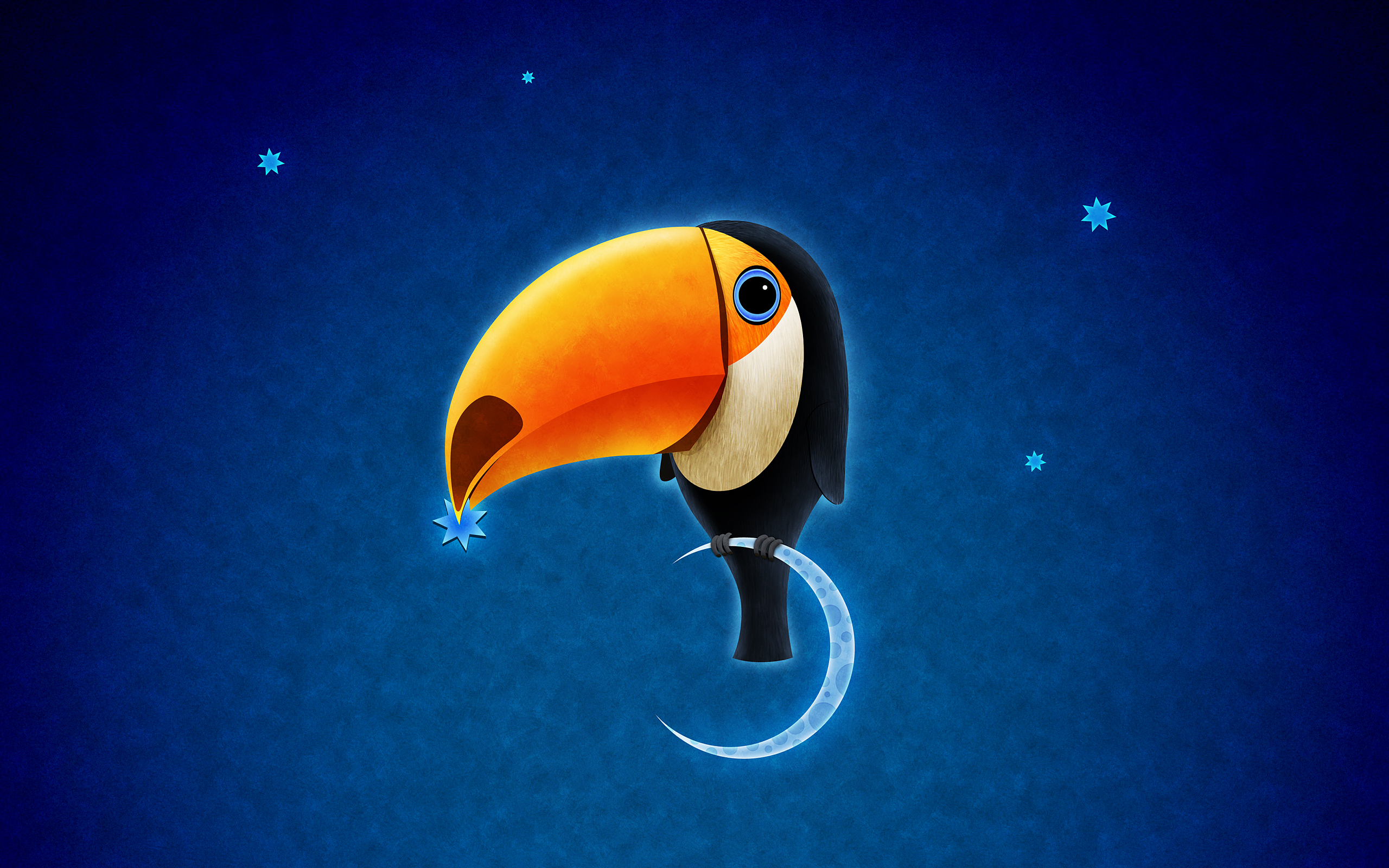 HD Wallpapers Toucan Bird