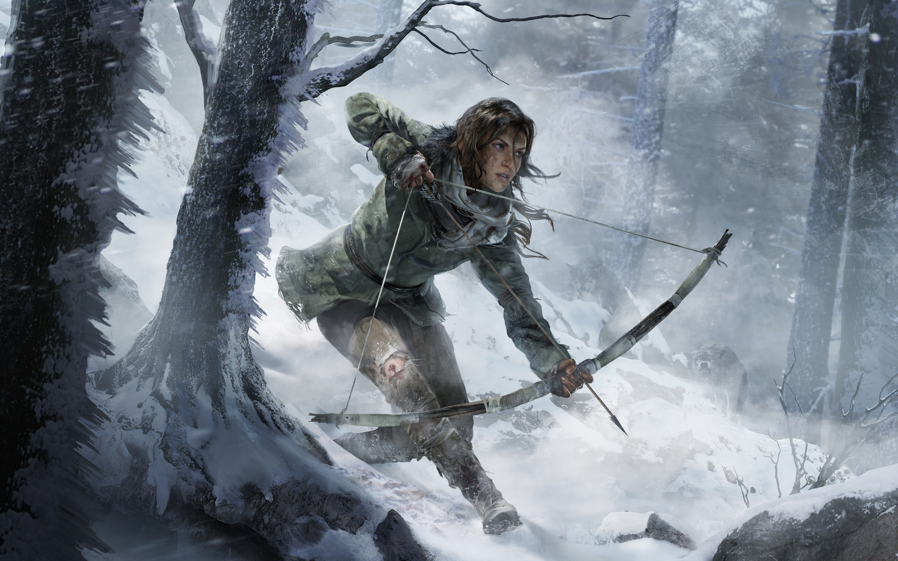 HD Wallpapers Rise of the Tomb Raider 2015 Game