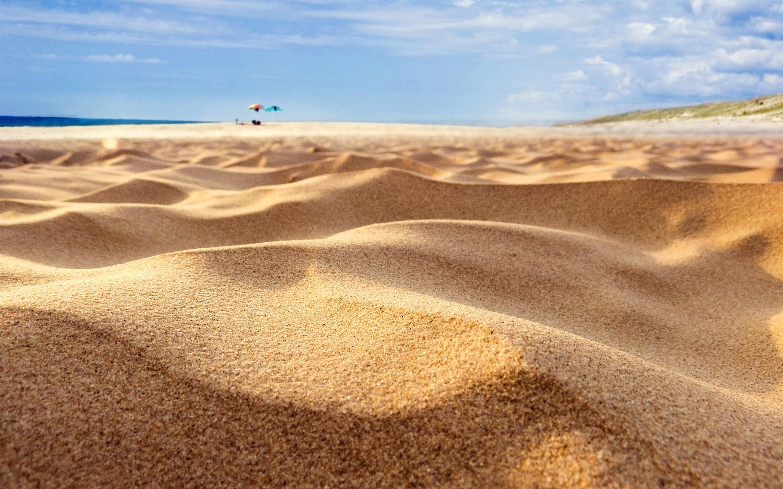 HD Wallpapers Summer S Dunes