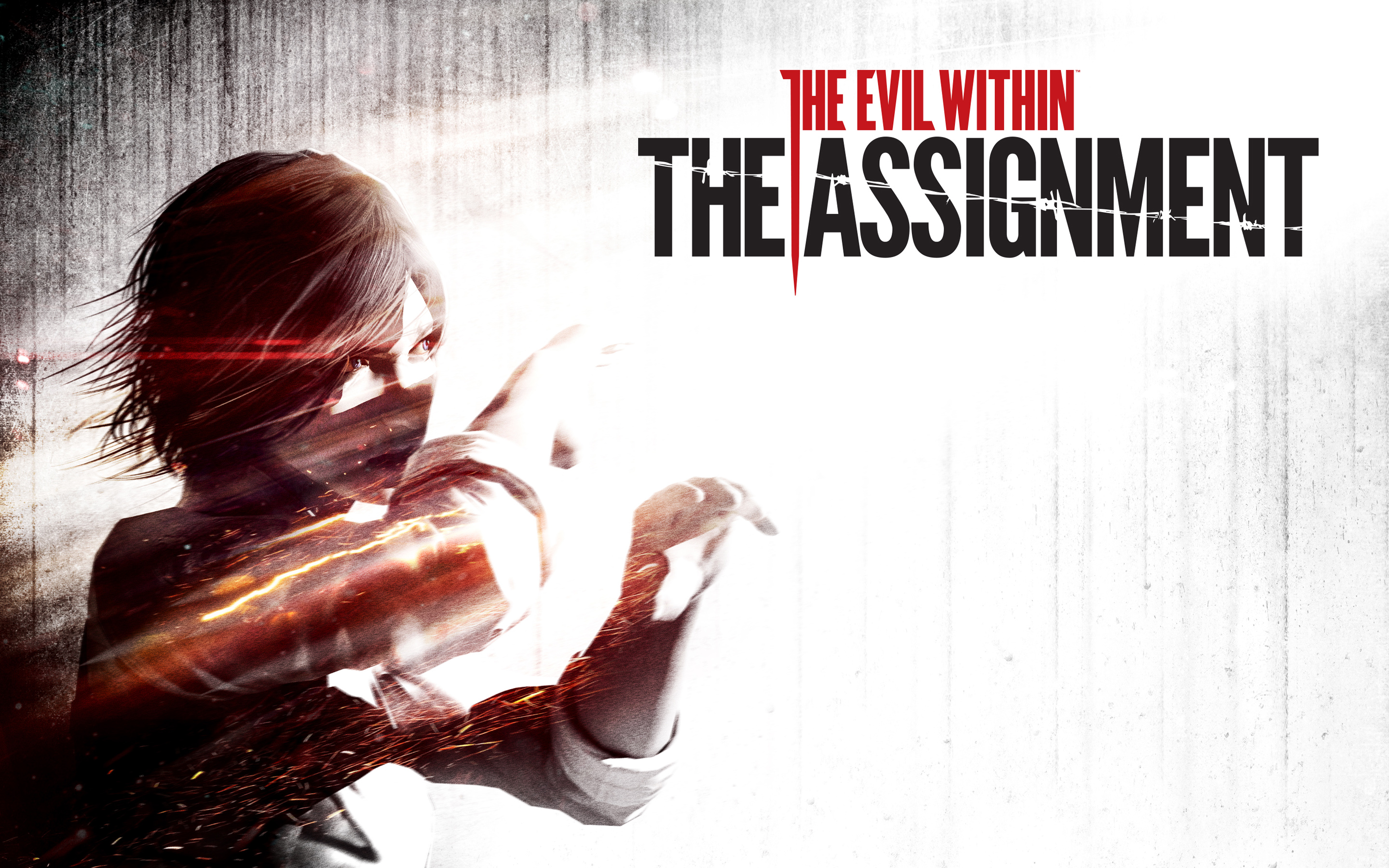 HD Wallpapers The Evil Within The Assignment